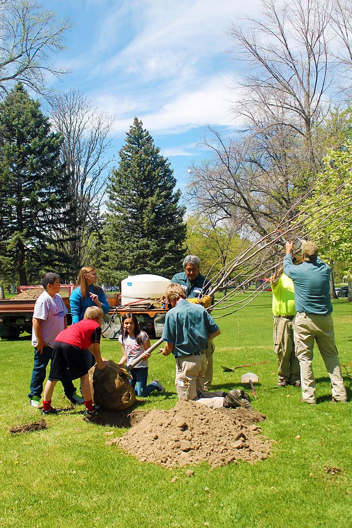 Pueblo Parks and Recreation - Urban Forestry