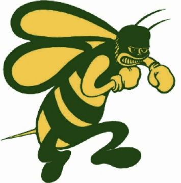 Image of Pueblo County High School Mascot